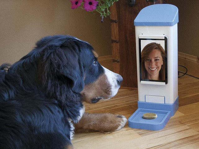 iCPooch: Internet Pet Treat Delivery System