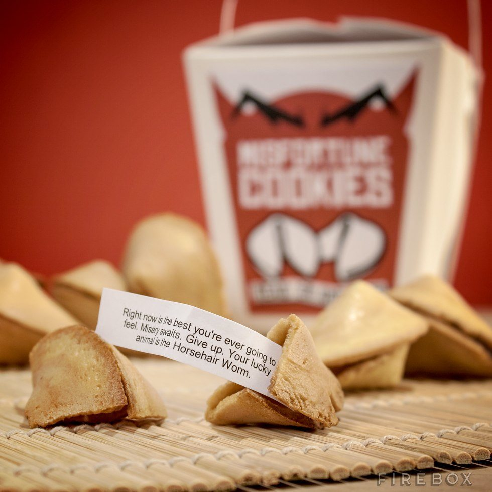 Misfortune Cookies Tell You Like It Is