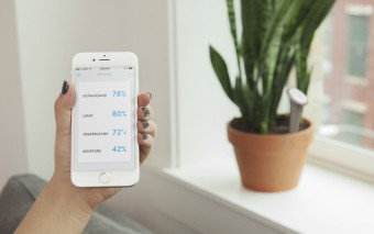 Sprout: Sensor + App + Ultrasound for Plants