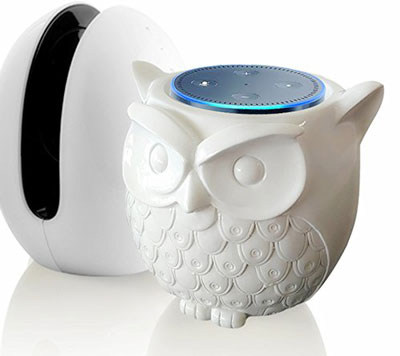 owl-statue-guard-station-for-echo-dot