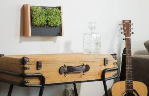 Indoor garden archives gadgetify for Indoor gardening gadgets